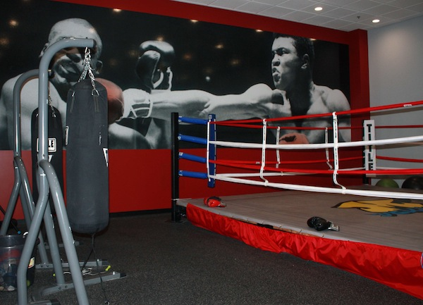 The Boxing Ring at Mountainside Pavilions...