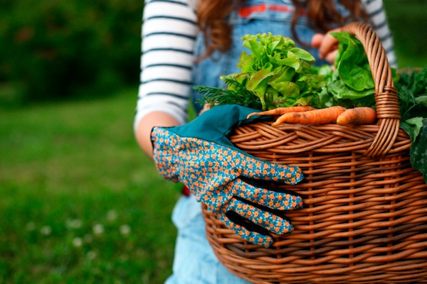 Gardening burns calories and saves money