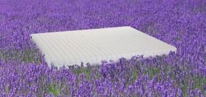 lavender-mattress-garden