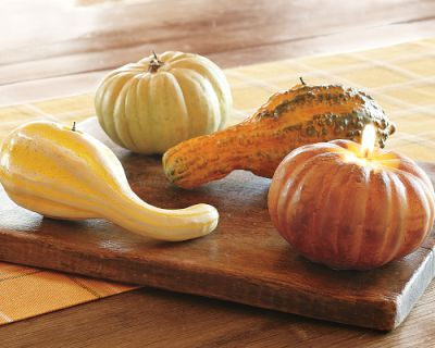 ws-pumkin-and-gourd-candles